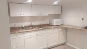 One Bedroom Basement apartment -Available NOW !