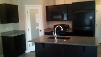 NEWER CONDO 2 Bed 2 Bath 2 Parking Stalls in Airdrie $1495