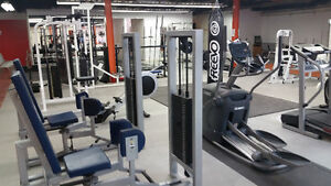 Christmas SPECIAL! 50% off your first month of personal training Kitchener / Waterloo Kitchener Area image 4