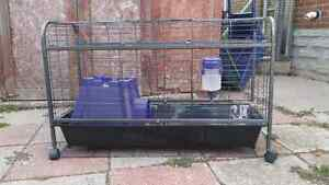 Large animal cage (rabbit, guinea pig)
