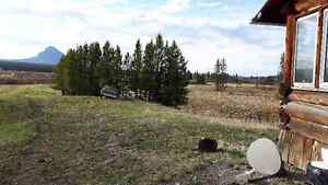 400 acres of  good hay land to be cut or you bring your cattels Williams Lake Cariboo Area image 10