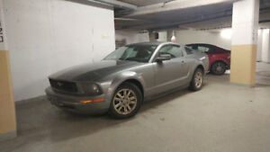 2006 Mustang Great Condition