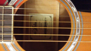 Aria electric acoustic