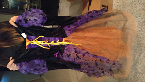 Halloween witch dress size med