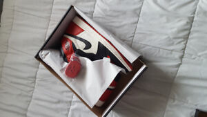 Air Jordan 1 Bred Toe - SIZE 13