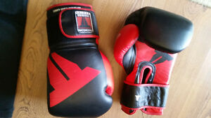 Muay Thai/MMA Boxing Gloves and Shin guards