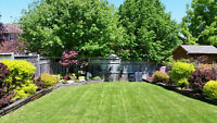 Check out that Backyard!   Rent to Own in North Barrie