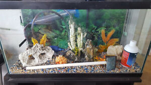 complete 25 gallon fish tank and stand