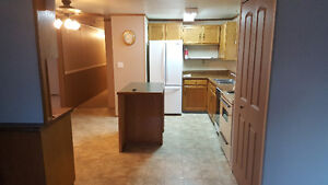 Trailer for sale #23 Royal Heights