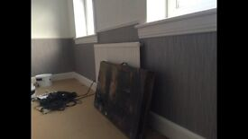 Professional Painter and Decorator and handyman service