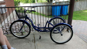 Schwinn bike for sale