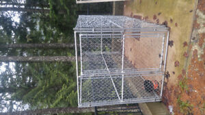 Chainlink dog kennel