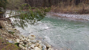 104 Acre Land Assembly Cheakamus Valley Squamish North Shore Greater Vancouver Area image 9