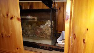 125 gallon aquarium Kingston Kingston Area image 3