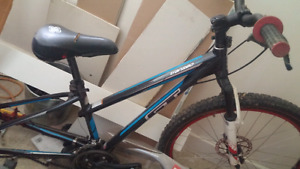 Gt mountain bike 100$ o.b.o