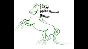 BEAM Equine Massage Therapy - Contest