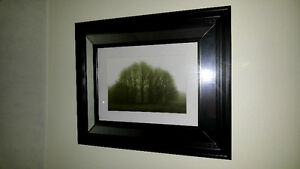 Picture mirror frame