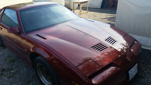 1988 Pontiac Trans Am Hatchback