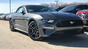 2019 Ford Mustang GT PREMIUM 5.0L V8 401A