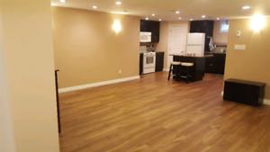 Southgate area basement suite- roommate wanted!