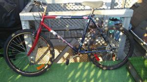 "RipTide Bike 22"" 55cm"