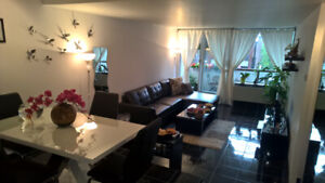 Spacious 1 bedroom (3 1/2) apartment for rent in downtown
