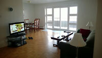 2 Bedroom Apartment Looking for Student Roommate