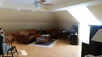 Private Large 1 + 1 Bedroom above Business