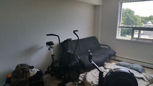 Available May - 1 Bedroom - Close to UWO + Downtown $450 incl.