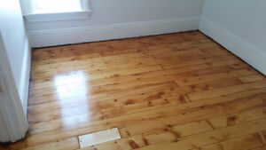 Newly renovated 2 Bed 1 Bath apartment. Includes Heat and Water! Cambridge Kitchener Area image 8