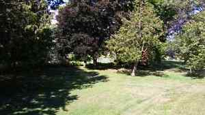 Two lots on Grand River. Stone House Kitchener / Waterloo Kitchener Area image 6