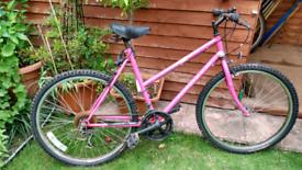 Apollo ladies mountain bike needs a service