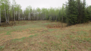 REDUCED!!  2.75 ACRES RURAL ATHABASCA COUNTY BY COLINTON