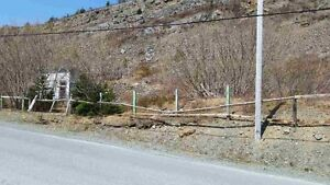 166-176 Butlerville Rd - Bay Roberts, NL - MLS# 1131545 St. John's Newfoundland image 3
