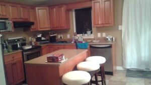 Large room for rent  Dieppe St Anselme