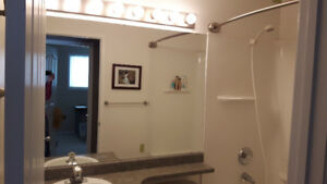 Bathroom Vanity Wall Mirror with Clips