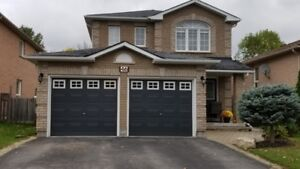 Barrie Holly Community Area Full Detached House for Rent