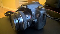 Canon 70D DSLR plus extras, see full ad for info