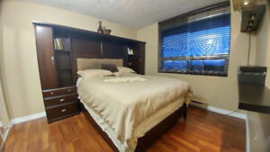 Private Room for Daily, Weekly Rent DOWNTOWN