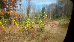 2 Acre building lot surrounded by lakes Paudash and Anderson