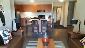 Leasing for May and September 2017 Kitchener / Waterloo Kitchener Area image 1
