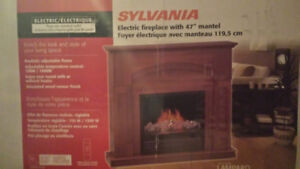 Foyer electrique / electric fireplace