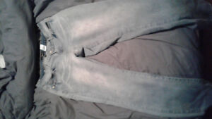 Womens baby phat jeans size 16 XL