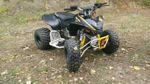 2009 Can Am DsX 90cc