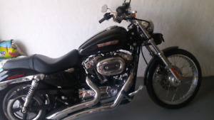 PRICE REDUCED2010, 1200 Sportster Custom Harley Davidson LOW KMS