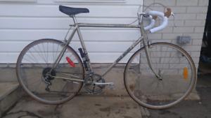 Road Bike - XL Frame   Tall Rider