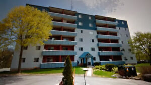 2 bed room high end renovated apartment WATERDOWN