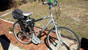 2007 Del Sol Hybrid Bicycle For Sale