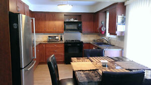 Large room in barrie close to downtown for lady