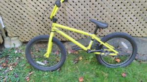 Youth GT bmx bike